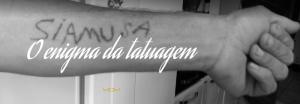 tatucapturar